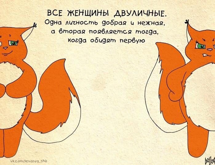 Комиксы для девушек о белочке Ши