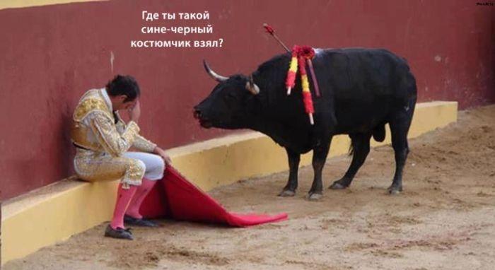 Подборка прикольных картинок 05.03.2015 (94 картинок)