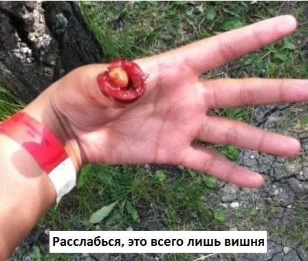 "Подборка картинок в стиле ""показалось"" 10.03.2015(29 фото)"