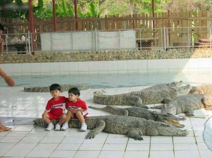 Прикольные фото, сделанные в Азии (68 фото)