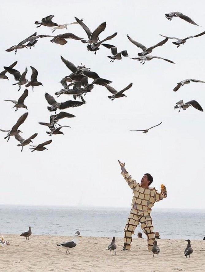 Подборка прикольных фото 17.03.2015 (18 фото)