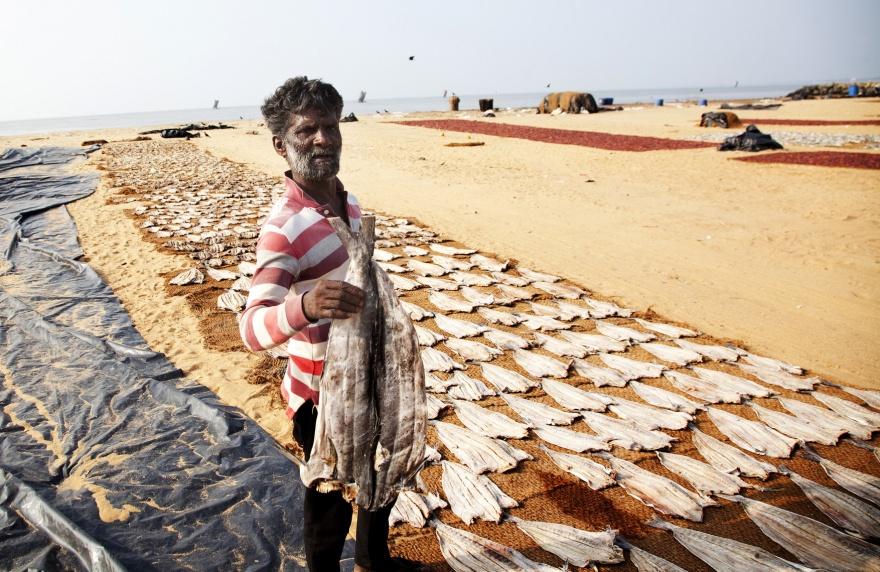Экстремальная рыбалка на шестах (15 фото)