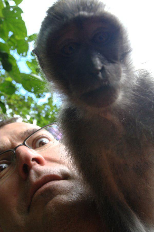 Прикольные селфи с животными (30 фото)