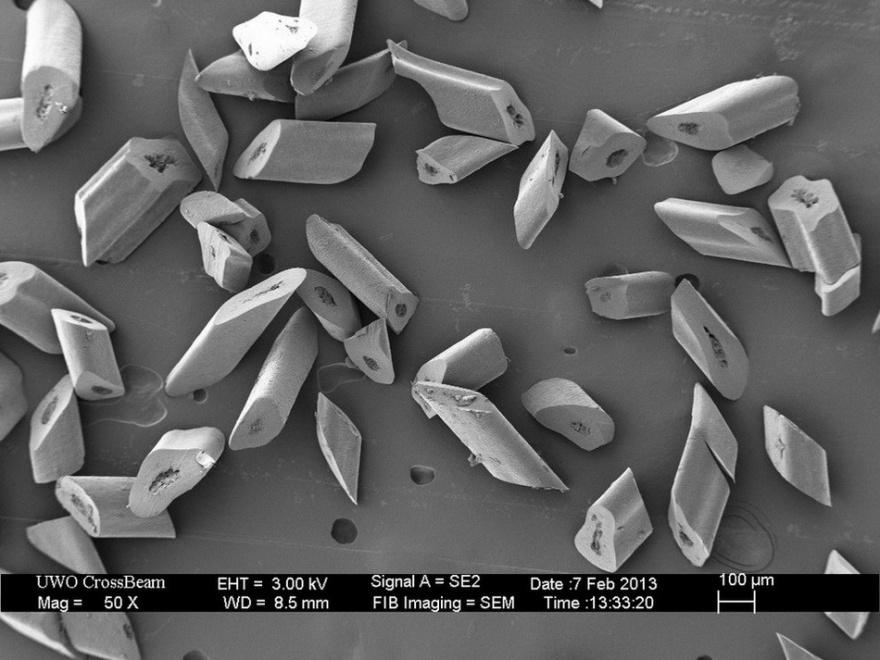 Привычные вещи под микроскопом (16 фото)
