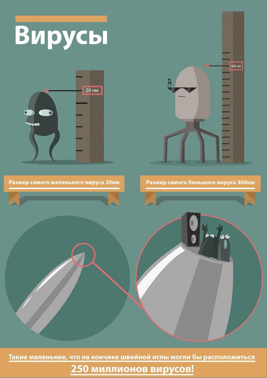Несколько интересных фактов о вирусах