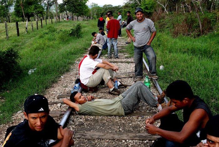Опасная езда на поездах в Мексике (15 фото)