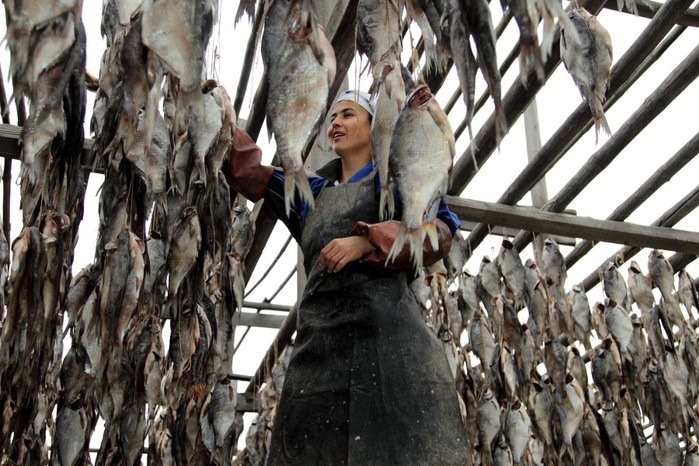 Как солят рыбу в Астрахани (21 фото)