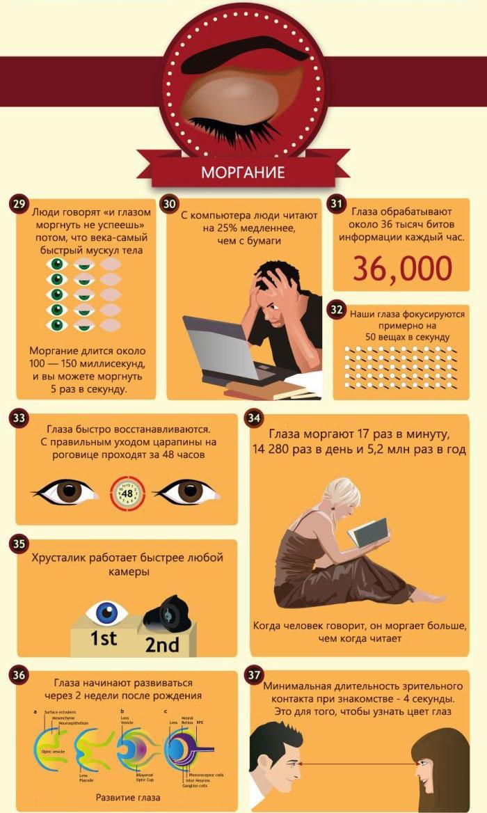 50 фактов о глазах