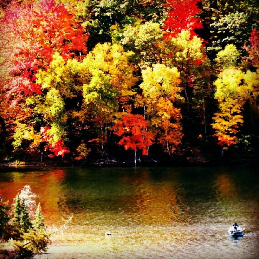 27 красивых фотографий природы
