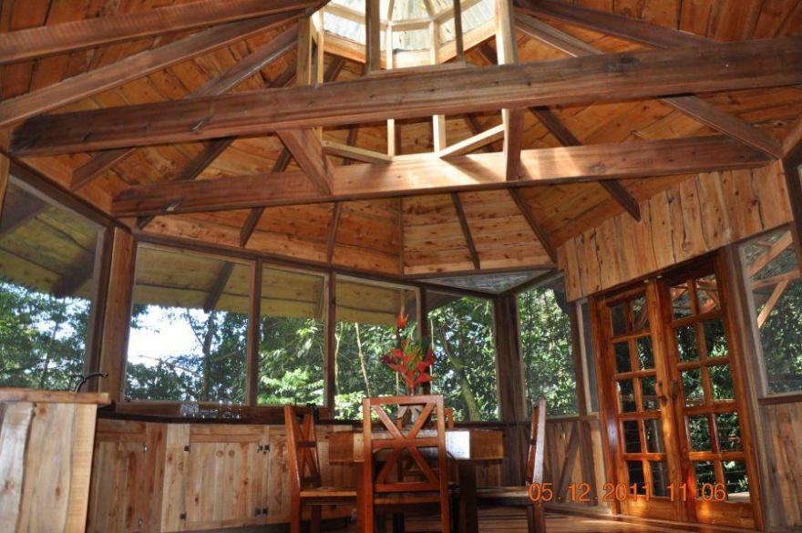Небольшая гостиница в кроне деревьев (32 фото)