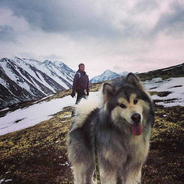 Аляска глазами непрофессиональных фотографов (23 фото)