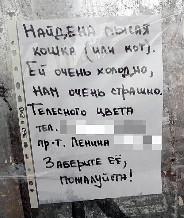 Подборка прикольных картинок 03.04.2015 (98 картинок)