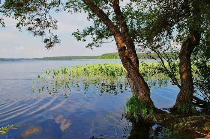 Красота озера Селигер (30 фото)