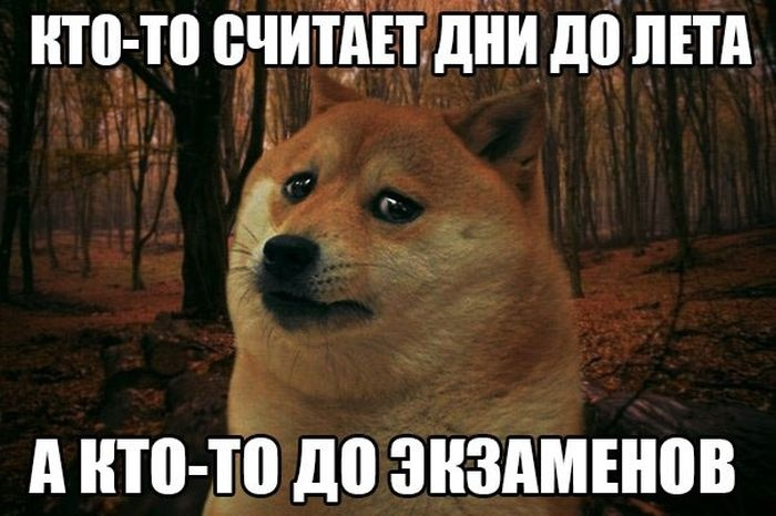 Подборка прикольных картинок 06.04.2015 (117 картинок)