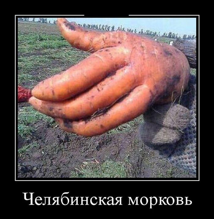 Подборка демотиваторов 07.04.2015 (27 картинок)