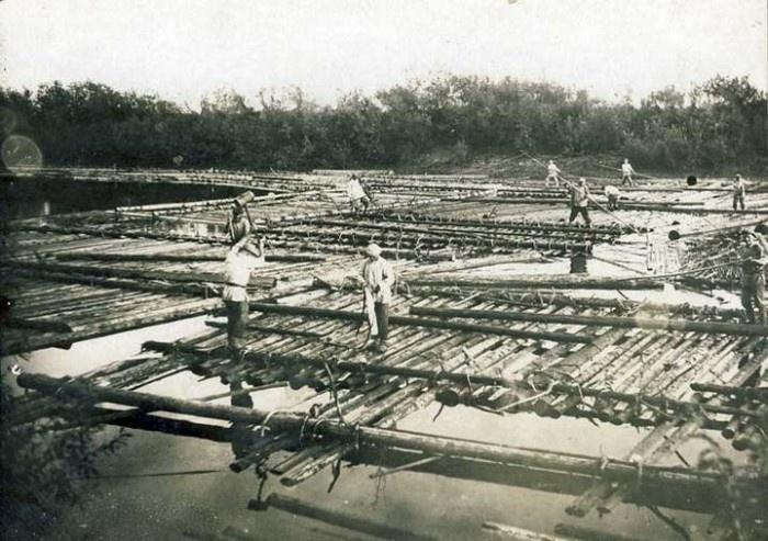 Огромные корабли для сплава леса (17 фото)