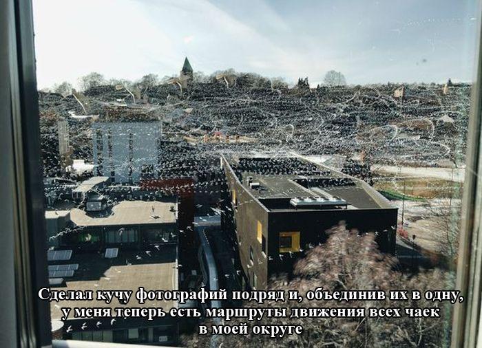 Подборка прикольных картинок 13.04.2015 (98 фото)