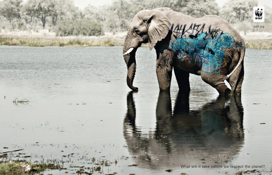 Яркие примеры социальной рекламы (30 фото)
