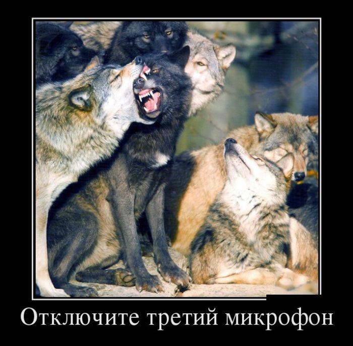 Подборка забавных демотиваторов 16.04.2015 (27 картинок)