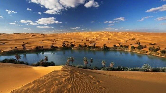 Красивые фото ливийского оазиса (10 фото)