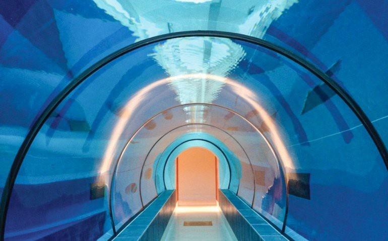 Бассейн глубиной 40 метров (8 фото)