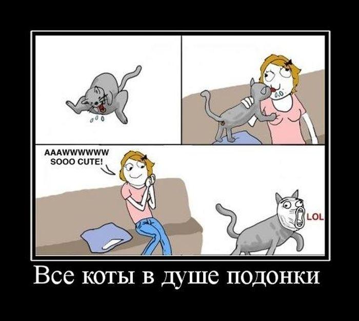 Подборка демотиваторов 21.04.2015 (22 картинки)
