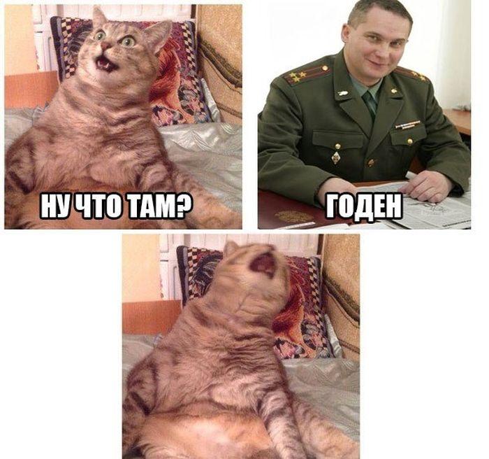 Подборка прикольных картинок 24.04.2015 (94 картинки)