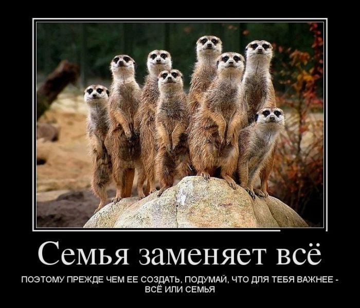 Подборка демотиваторов 24.04.2015 (28 фото)