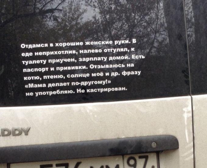 Прикольные надписи и объявления (16 фото)
