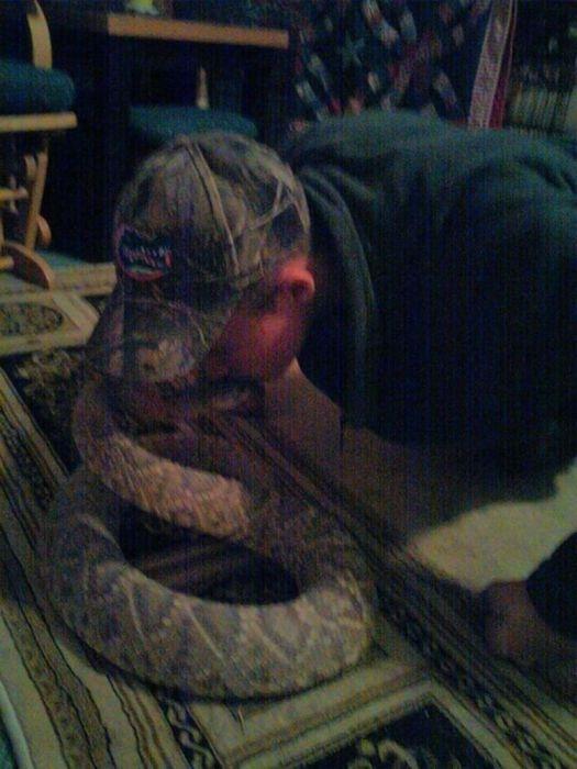 Фото незадачливого любителя ядовитых змей (9 фото)