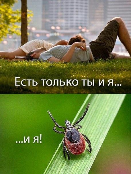 Подборка прикольных картинок 01.05.2015 (66 картинок)