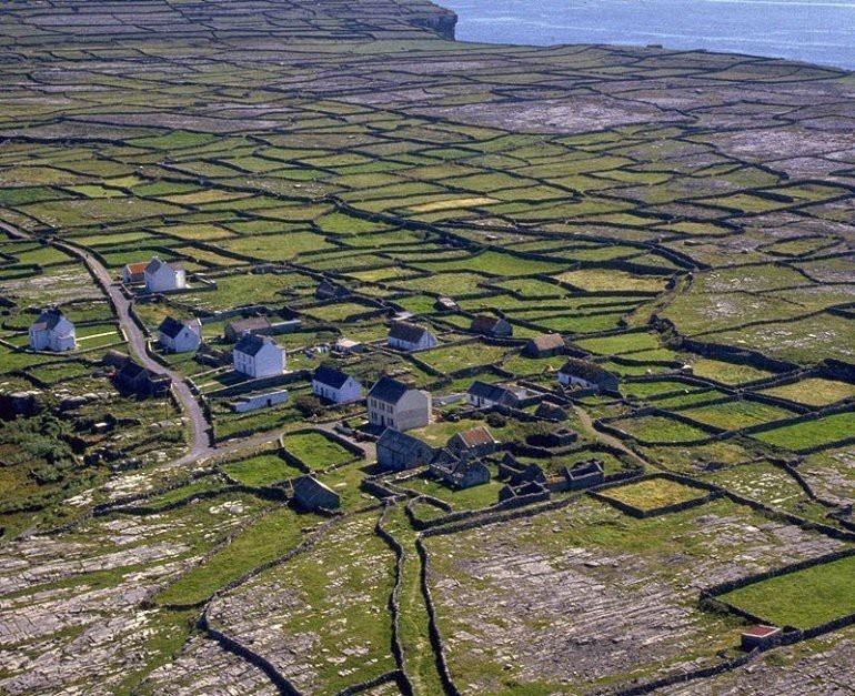 История появления каменных стен, окружающих поля в Ирландии (15 фото)