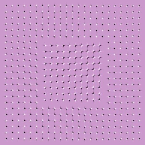 16 прикольных оптических иллюзий (11 фото и 5 гифок)