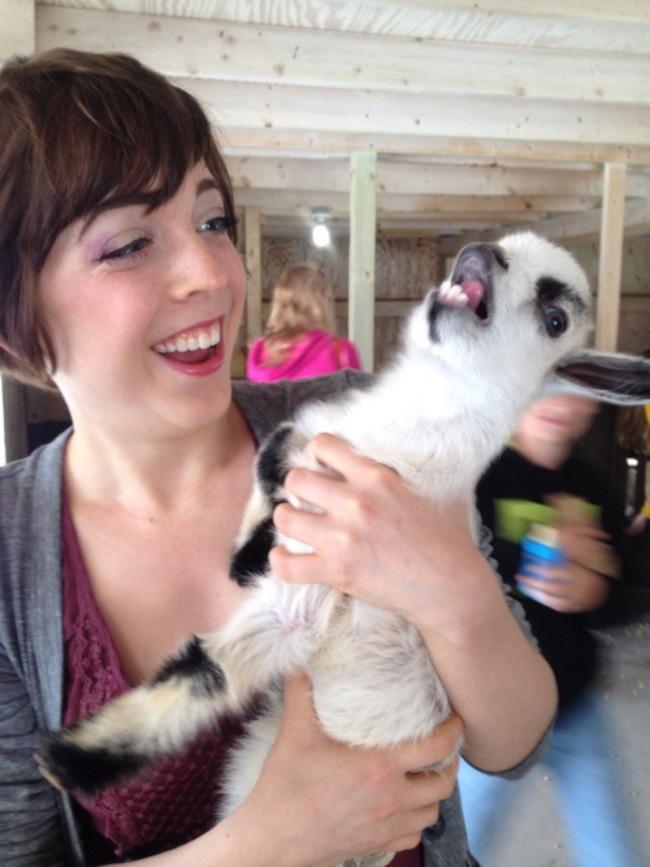 Забавные фото животных в человеческих объятиях (14 фото и 3 гифки)