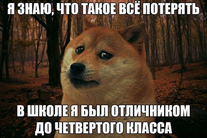 Подборка прикольных картинок 06.05.2015 (96 картинок)