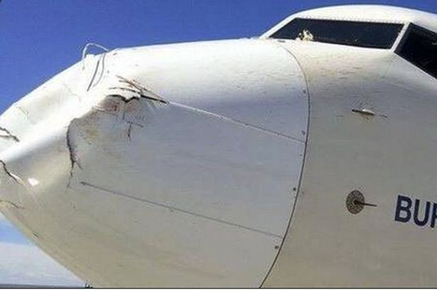 Как выглядит самолет после столкновения с птицей (5 фото)