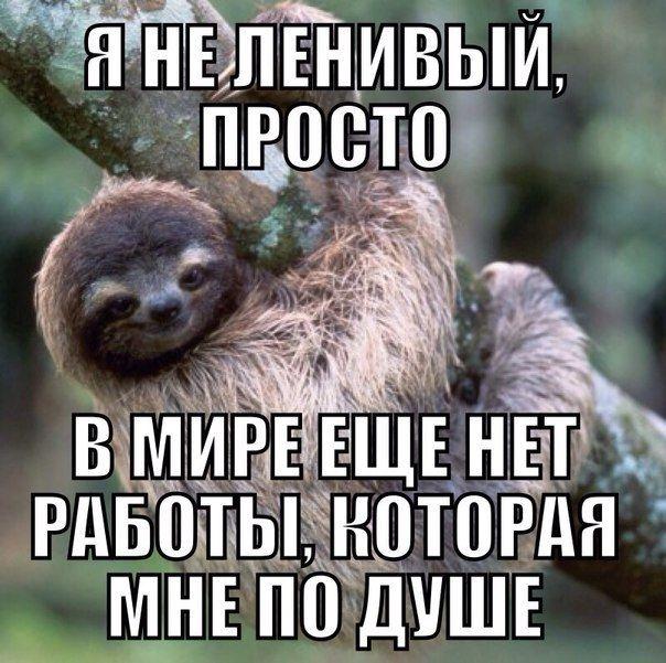 Подборка прикольных картинок 12.05.2015 (70 картинок)