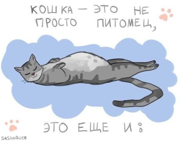 Подборка забавных комиксов 13.05.2015 (19 картинок)