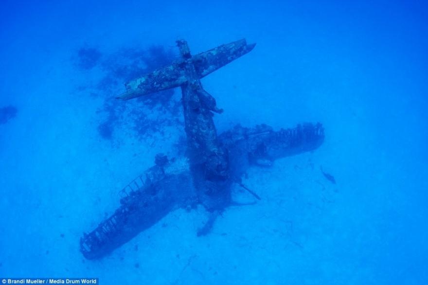 Огромное кладбище военных самолетов на дне Тихого океана (17 фото)