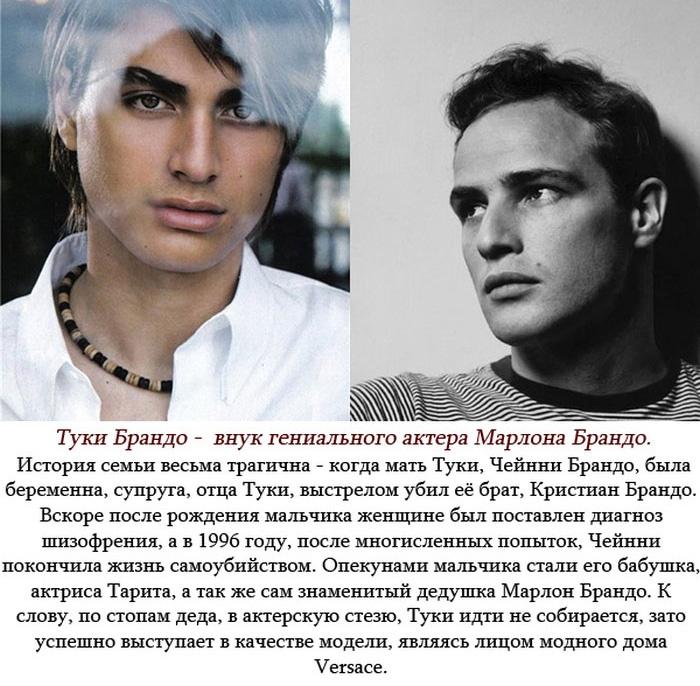 Успешные потомки некоторых знаменитостей (6 фото)