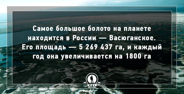 Интересные факты о воде и гидросфере Земли (11 картинок)