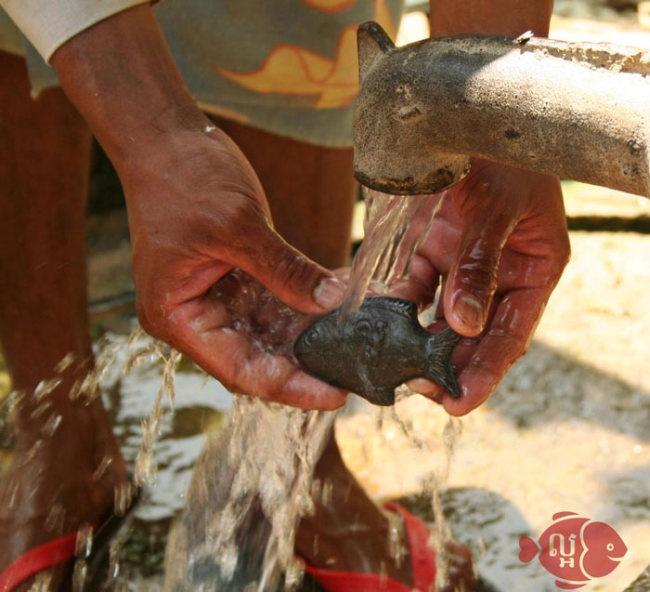 Рыба, помогающая бороться с анемией (10 фото)