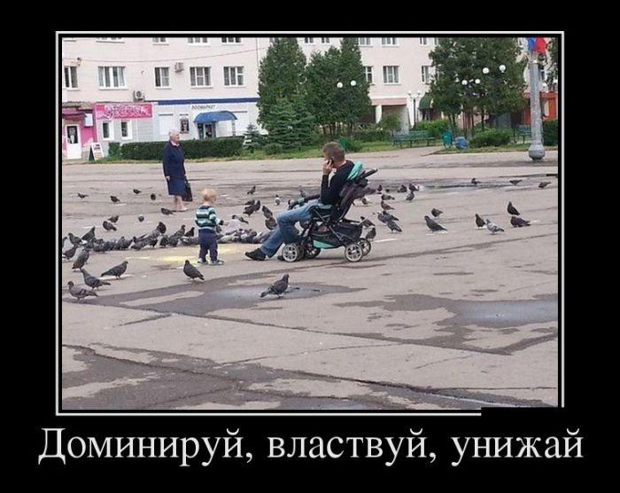 Подборка забавных демотиваторов 20.05.2015 (26 картинок)