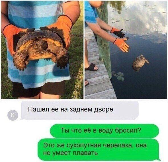 Подборка прикольных картинок 21.05.2015 (101 фото)