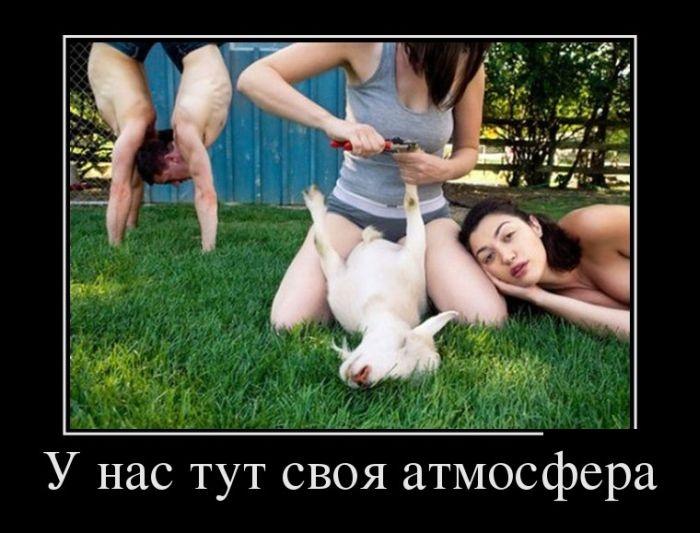 Подборка забавных демотиваторов 26.05.2015 (23 картинки)