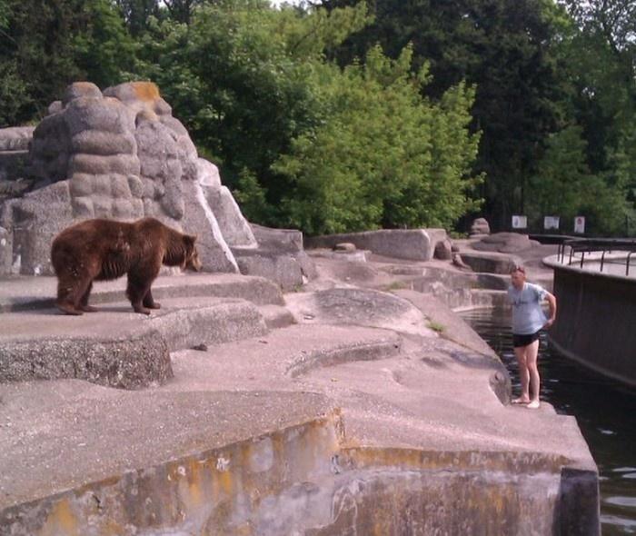 Происшествие в зоопарке Варшавы (3 фото)