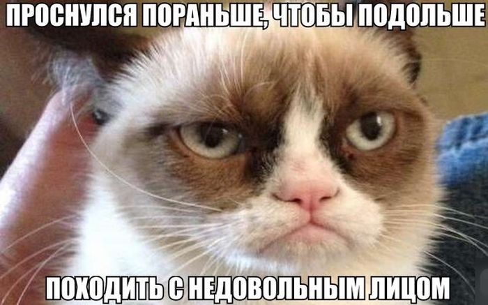 Подборка прикольных картинок 29.05.2015 (96 фото)