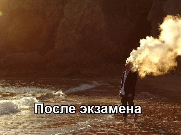 Подборка прикольных картинок 30.05.2015 (43 картинки)