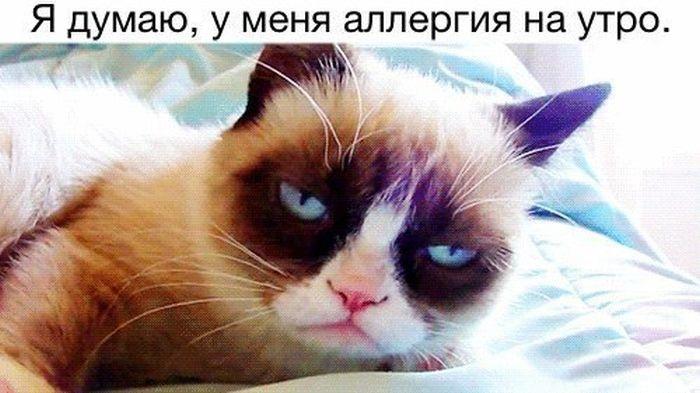 Подборка прикольных картинок 01.06.2015 (94 картинки)