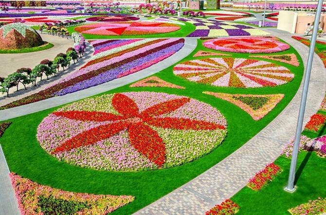 Один из самых больших цветочных парков в мире (19 фото)